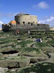 Ambleteuse, fort Mahon (Ytierny) Tags: france station vertical architecture fort fortification rocher militaire merdunord mahon dfense vauban pasdecalais ambleteuse balnaire littoral algue ctedopale ytierny
