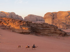 Jordan (-jeanette-) Tags: travel canon sand desert powershot jordan camel hs bedoin wadiram sx50