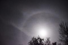 Mond mit Halo (juliane.herrmann) Tags: mond halo kondensstreifen naturphnomen mondmitring ringumdenmond