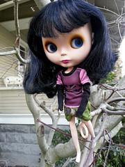 Daphne the tree climber