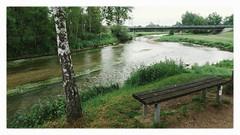 Birthing the Danube River (Linus Wärn) Tags: bridge nature river germany bench stream schwarzwald blackforest danube confluence donau badenwürttemberg donaueschingen leicadlux5