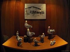 February 22: World seagulls (OzzRod) Tags: seagulls pentax fisheye k5 artificiallight rokinon8mmf35fisheye