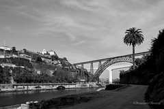 040.2014 (Francisco (PortoPortugal)) Tags: portugal porto franciscooliveira portografiaassociaofotogrficadoporto fol2145