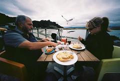 Breakfast at Scorching Bay (@fotodudenz) Tags: new sky seagulls bay cloudy kodak harbour voigtlander bessa wide zealand wellington l 100 12mm ultra withdad heliar scorching 2014 ektar withambre nz2014