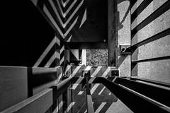 down. (angsthase.) Tags: bridge bw grass lines germany concrete deutschland blackwhite shadows geometry steel nrw schwarzweiss brcke schatten ruhrgebiet dortmund beton stahl 2014 ruhrpott panasoniclumixdmctz10