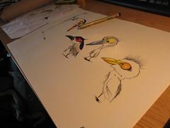 Littles herons (François Berthet) Tags: illustration drawing dessin ibis caricature littles herons bittern letraset ardeidae bihoreau bubulcus nycticorax minutus ardeola ralloides pigma chevelu gardeboeuf crabier blongios ixyobrychus