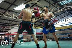 DSC_3249 (MORAD LE THAI Photography) Tags: pattaya thailande sityodtong muaythaï
