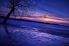 Photowalk 8 (ShinzonTme) Tags: winter lake snow ice frozen arboretum tampere hatanpnkartano