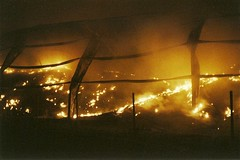 0048 (BigBSTRD) Tags: fire lomography flames ishootfilm filmphotography filmisnotdead lomographyfilm ingnition 35mmprints