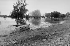 Bote (Diego Serra) Tags: rio river mirror boat reflejo bote