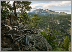Twin Sisters Peaks - Allenspark, Colorado (Photo-John) Tags: travel mountain mountains landscape outside outdoors colorado outdoor sony stock adventure alpine editorial rockymountains stockphoto stockphotography twinsisters allenspark editorialphotography outdoorphotography sonyalpha sonydslr twinsisterspeaks a77ii
