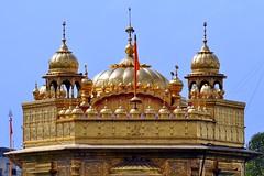 India - Punjab - Amritsar - Golden Temple - 256 (asienman) Tags: india sikh punjab amritsar gurudwara goldentemple harmandirsahib asienmanphotography