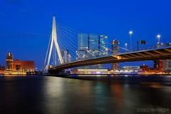 Rotterdam - Erasmus Bridge (NL) (Cdric Mayence Photography) Tags: holland netherlands port harbor rotterdam nightshot bluehour paysbas hdr highdynamicrange erasmusbrug erasmusbridge rhin heurebleue vuedenuit rotterdamskyline oloneo rhinemeusescheldt