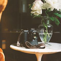 . (Ansel Olson) Tags: camera flowers tlr film modern rolleiflex lens table drive reflex nikon kodak twin peony tulip vase medium format motor f3 portra saarinen peonies midcentury