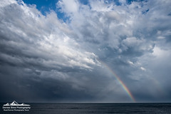 _DSF9908-Edit (neech_2000) Tags: ocean city horses beach weather clouds raw maryland ponies atlanticocean assateaguestatepark