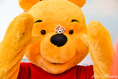 Pooh (disneylori) Tags: disney disneyworld pooh winniethepooh characters wdw waltdisneyworld magickingdom fantasyland disneycharacters nonfacecharacters meetandgreetcharacters