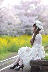 DSC_9563 (nana_tsuki) Tags:
