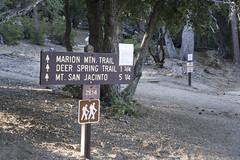 Marion Mountain Trail (evaxebra) Tags: