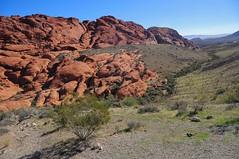 Red Rock Canyon, NV (faungg's photos) Tags: redrockcanyon travel usa nature landscape us roadtrip nv