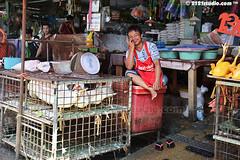 Happy Trader (2121studio) Tags: thailand bangkok siam travelphotography amazingthailand  travelinthailand khlongtoeymarket khlongtoeimarket  landoftiger landofwhiteelephant thaitourinformation