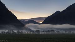 Misty morning @ lake Heiterwang (MC-80) Tags: mist lake alps misty fog austria tirol sterreich haze nebel alpen sonnenaufgang tyrol mistysunrise heiterwang heiterwangersee nebelstimmung