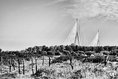 Le pont de Normandie K100TMAXpro_DSF1924 (mich53 - Thanks for 2700000 Views!) Tags: campagne paysage landscape monochrome noirblanc bw france pontdenormandie architecture normandie fujifilm xf1655mmf28rlmwr xt1 sky clouds voile abstract graphicalexploration vitesse speed