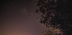 Away from home (azadkaratas) Tags: canon stars outdoor astro astrophotography 1855mm 1855 100d