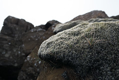 P1000563 (Guillaume-Jacobelli) Tags: june lava iceland juin secretbeach roadtrip islande lave 2016 plagesecrte
