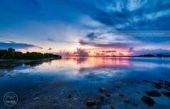Biscayne Bay. Ethereal. (Mario Houben | Photography) Tags: longexposure sunset usa seascape canon florida miami tropical lowtide mangroves keybiscayne southflorida biscaynebay crandonbeach mariohoubenphotography