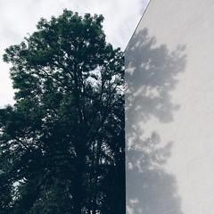 #tree #shadow #reflection #transparency #wosjetzt #cool #treesarecool #concrete #wall #wallsarecooltoo #vscocam #igersgraz (goernsnroses) Tags: shadow reflection tree wall concrete cool transparency treesarecool instagram ifttt vscocam igersgraz wosjetzt wallsarecooltoo