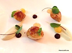 Culloden House - Scallop with miso and balsamic (GastroNaugties (@BuzzzzOff.com)) Tags: scotland food finedining travel scallop