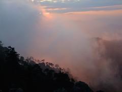 PATAMBAN (NIKONIANO) Tags: mxico mexique messico enmxico lugaresdemxico patamban cerrodepatamban naturaleza rboles neblina niebla fog amanecer landscape nikoniano sergioalfaroromero