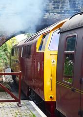 D1015 at Arley. (curly42) Tags: railway hydraulic maybach svr arley d1015 class52 westernchampion