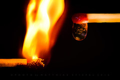 Fire and Ice (HMM) (matthiasstiefel) Tags: ice fire fireice hotcold macromondays macromonday