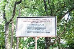 Palembang (14) (M Arief Wibowo) Tags: museum river temple bukit palembang musi candi tinggi astano karanganyar kedaton sriwijaya gedong srivijaya siguntang gumpung