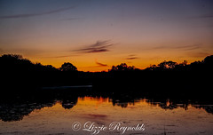 After todays torrential showers, a beautiful sunset at Filby Broad, Norfolk, with Howie Marsh. (lizzieisdizzy) Tags: howiemarsh sundown broad water calm calming relaxing clouds wispy bigsky norfolk filby eastanglia trees reflections reeds ripples colourful beautifulcolours