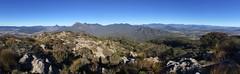 View from Mt Maroon (NettyA) Tags: panorama pano rocky australia qld queensland mtbarney grasstrees 2016 seq scenicrim mtmaroon mtlindesay mtbarneynationalpark appleiphone6