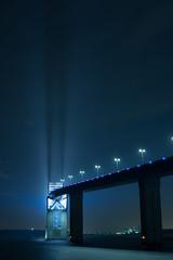 DSC04483 (Zengame) Tags: bridge japan architecture night zeiss tokyo sony illumination landmark illuminated cc jp creativecommons    distagon     wakasu   a6300  tokyogatebridge   distagontfe35mmf14za fe35mmf14 6300 distagonfe35mmf14