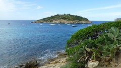 Majorca (121) (Pat Neary) Tags: holiday june majorca 2016