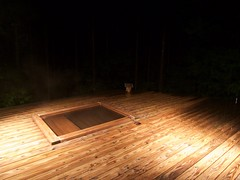 a hot bathtub in the darkness of the wood (YUICHI38) Tags: hotspring japan