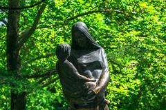 Je suis tomb en amour avec bont. (- Ali Rankouhi) Tags: tree green iran mother tehran mutter  mre   mellatpark