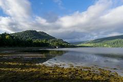 Vue sur le Loch Fyne et le pont depuis Inveraray