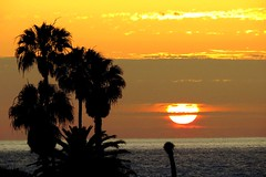 California Classic, La Jolla (moonjazz) Tags: california light summer sun classic silhouette yellow clouds photography star big intense pacific sandiego zoom horizon sunday lajolla palm heat blinding magnified setting estrella brilliant elsol moonjazz