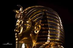 Tutankhamun's death mask (max.fontanelli) Tags: king treasure tomb egypt re tesoro tomba egitto oro tutankhamun pharaon golg faraone