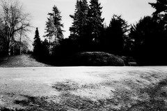 Bank (Andreas Meese) Tags: trees winter friedhof cemeteries tree abandoned nature cemetery graveyard nikon decay cementerio hamburg natur bank cemitrio bume baum ohlsdorf verlassen cimetire cementerios verfall zerfall cemitrios cimiteri cimetires friedhoefe cimiteris d5100