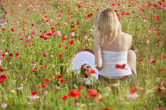 (jljjld) Tags: nature girl field outdoors mirror spring poppies