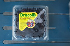 Driscoll's blackberries (Marisa | Food in Jars) Tags: strawberries raspberries blackberries blueberries berrytour driscollsberries berrybloggers