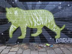 Darky... (colourourcity) Tags: streetart stencils art graffiti stencil awesome tiger graff dope aerosol stencilart darky streetartmelbourne cocoajackson damienmitchell burncity flickrandroidapp:filter=none colourourcity