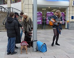 Hound of the buskerville (Andy WXx2009) Tags: street city girls boy people urban musician sexy dogs stockings beauty fashion shopping women europe legs guitar candid livemusic cardiff streetphotography style buskers blonde shorts bags brunette mygearandme