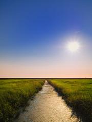 saturday night. (angsthase.) Tags: summer sky sun green water field grass landscape deutschland wasser sommer himmel sunny flare grün sonne levee seefeld deich norddeutschland niedersachsen m43 mft jadebusen wesermarsch 2013 micro43 lumixg20f17 epl5